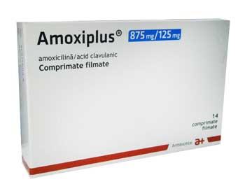Amoxiplus Prospect
