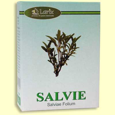 Prospect Salvie