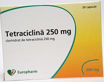 tetraciclina prospect