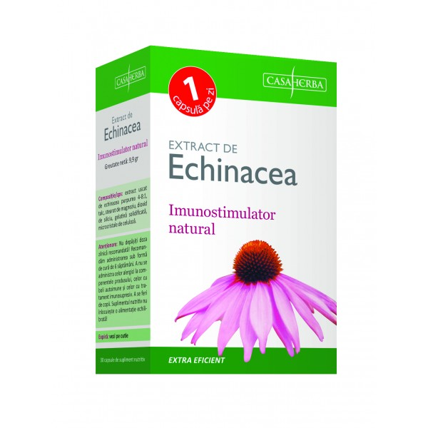 Prospect Tinctura de Echinacea