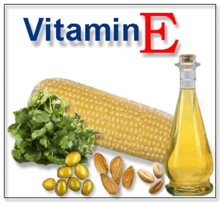 VITAMINA E - Antioxidant Imunostimulator Regenerare dupa Efort