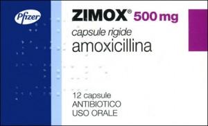 zimox prospect