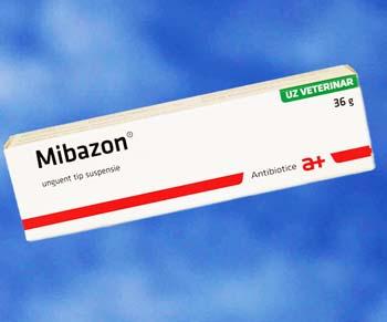Mibazon Prospect