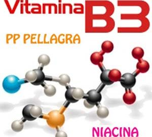 Vitamina B3 PP Niacina