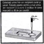 Instructiuni utilizare test de sarcina