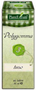 Polygemma Nr.3 Tuse