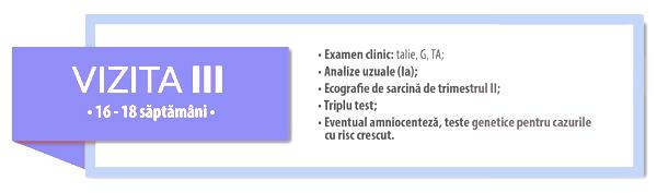 3-femibion-calendar-consultatii sarcina