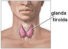 Afectiunile glandei tiroide