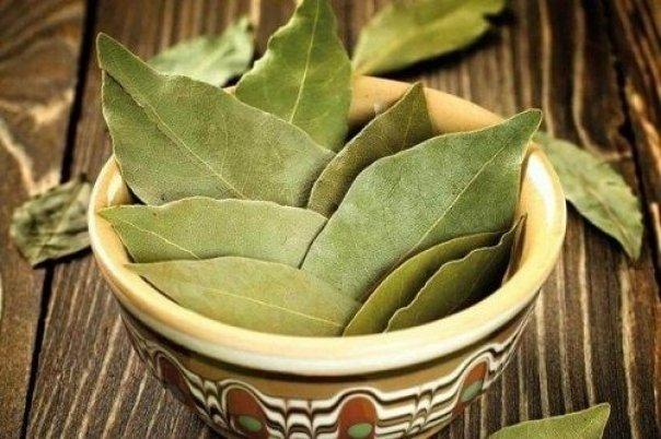 Tratament al Diabetului cu frunze de dafin