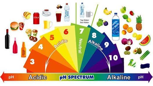 Alimentele Alcaline Sanatate Curata