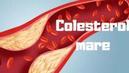 Cum Combatem Colesterolul Marit?