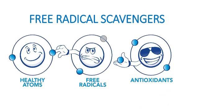 Ce e cu Radicalii astia?