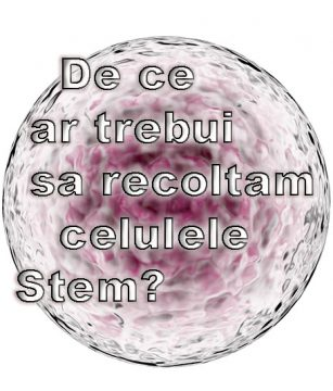 Celulele Stem