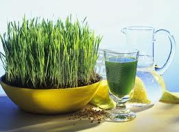 Tratament cu Grau verde